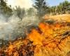 آتش سوزی دره ارغوان,ایلام,ایلام بیدار